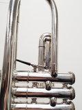 Trompet Getzen Capri_