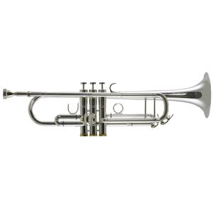 Trevor James Renaissance TJTR 8500 SP Trompet