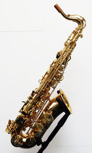 Altsaxofoon Roy Benson AS-201