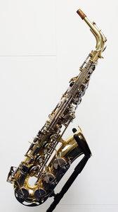 Altsaxofoon Yamaha YAS-25